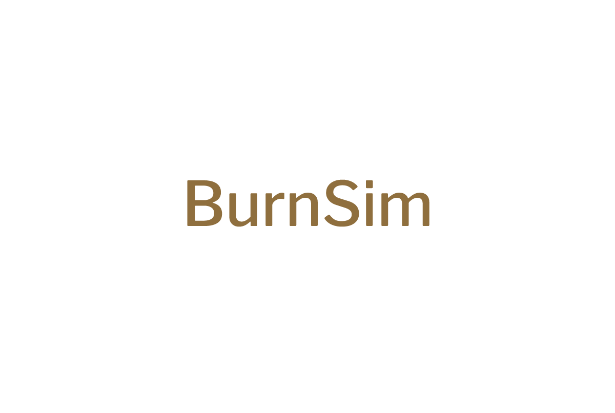 BurnSim
